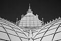 San Francisco Conservatory of Flowers-47.jpg