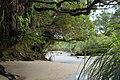 Sand flats near Kohaihai River (Kahurangi National Park).jpg