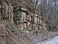 Sandstone (Greene Formation, Lower Permian; Clark Hill section, Long Ridge, Monroe County, Ohio, USA) 4 (29676337306).jpg