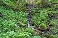 Sankt Peter (Hochschwarzwald) oberer Wasserfall im Gschwandersdobel.jpg