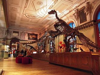 Natural History Museum, Vienna - One of the museum's halls