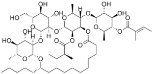 Jalap - Chemical structure of scammonin I, one of the primary chemical constituents of jalap