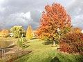Schaumburg, IL, USA - panoramio (15).jpg