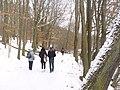 Schlachtensee - Winterwanderweg (Winter Countryside Path) - geo.hlipp.de - 33183.jpg
