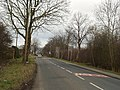 Scholes Lane, Scholes - geograph.org.uk - 140318.jpg