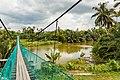 Segaliud Sabah Sungai-Segaliud-02.jpg