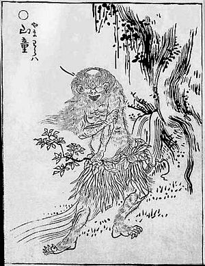 "Yamawaro - ""Yamawaro"" (山童) from the Gazu Hyakki Yagyō by Toriyama Sekien"