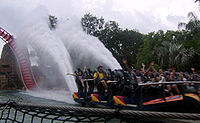 "One of SheiKra's floorless trains going through the ""splashdown"" element"
