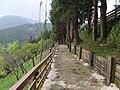 Sheipa Leisure Farm 雪霸休閒農場 - panoramio (8).jpg