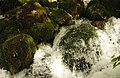 Shurubumu Waterfall Detail.jpg