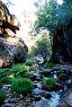 Sierra-de-guadarrama.jpg