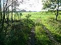 Slatiny - panoramio (18).jpg