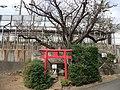 Small shrine on Tokaido Shinkansen side track in Samukawa 02.jpg