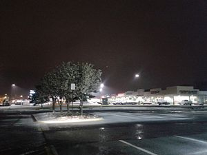 March 2017 North American blizzard - Snow on the ground in Hybla Valley, Virginia, the night of March 13.
