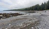 Sombrio Beach, Juan de Fuca Trail, Vancouver Island, Canada 20.jpg