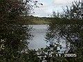 Sowley Pond, Nr Lymington, Hants - geograph.org.uk - 74355.jpg