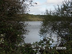 Sowley Pond, Nr Lymington, Hants - geograph.org.uk - 74355.jpg