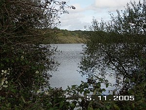 Sowley Pond - Image: Sowley Pond, Nr Lymington, Hants geograph.org.uk 74355