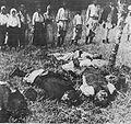 Srbští chlapci zavraždění před očima matek.jpg