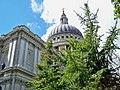 St. Paul scenic.jpg
