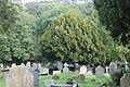 St Briget's Church - Eglwys y Santes Ffraid, Dyserth, Sir Ddinbych, Denbighshire, Wales 17.jpg