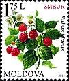 Stamps of Moldova, 2013-06.jpg