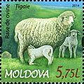 Stamps of Moldova, 2014-21.jpg