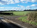 Start of footpath - geograph.org.uk - 1727290.jpg