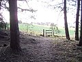 Stile exiting Church Wood, Solihull - geograph.org.uk - 336248.jpg