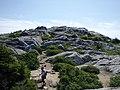 Stones in my passway (b64149ca-2cf1-48e0-80ed-f52da7b01ef6).JPG