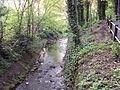 Stream, Ruabon - DSC05642.JPG