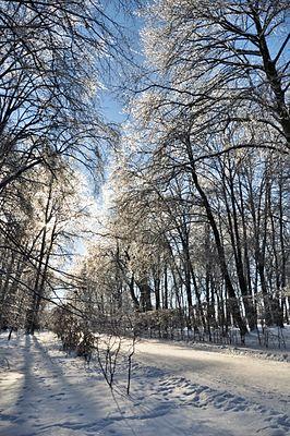 Stryjskyj Park 2.JPG