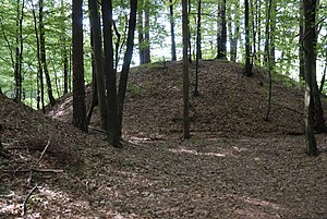 Tumulus - One of the Hallstatt culture-era tumuli in the Sulm valley necropolis