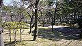 Sumaura park03 2816.jpg