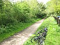 Sustrans route 61 at Cole Green - geograph.org.uk - 1330636.jpg