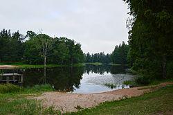 Suure-Kambja järv.JPG