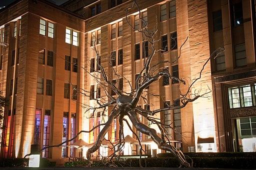 Sydney Vivid 2010 at Museum of Contemporary Art, Sydney