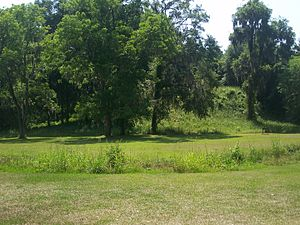 Lake Jackson Mounds Archaeological State Park - Mound 2, the largest earthwork at the site