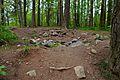 Tallberget - 2012-05-19 at 11-49-48.jpg