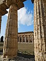 Temple of Poseidon (Paestum) 04.jpg