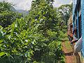 Thazi to Shwenyaung and Inle Lake (15132659365).jpg