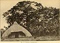 The Baganda (1911) (14768951204).jpg