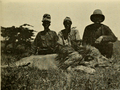 The Big Game of Africa (1910) - Male lion Sotik Plains May 1909.png