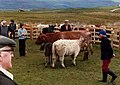 The Bunessan Show, Isle of Mull, 1981 - geograph.org.uk - 1628260.jpg