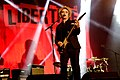 The Libertines Lollapalooza 2015-7.jpg