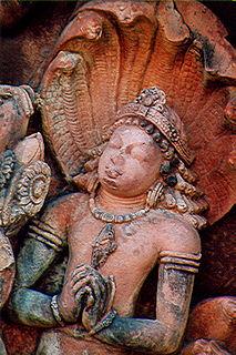 Nagaraja Indian religious figure