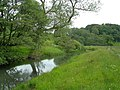 The River Ayr - geograph.org.uk - 464643.jpg