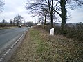 The Stone (Walton) milepost in its setting - geograph.org.uk - 1748123.jpg