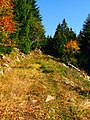 The Way Up - panoramio.jpg