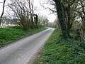 The road to Wilton, south of Great Bedwyn - geograph.org.uk - 400010.jpg
